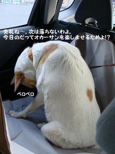 062owarai.jpg