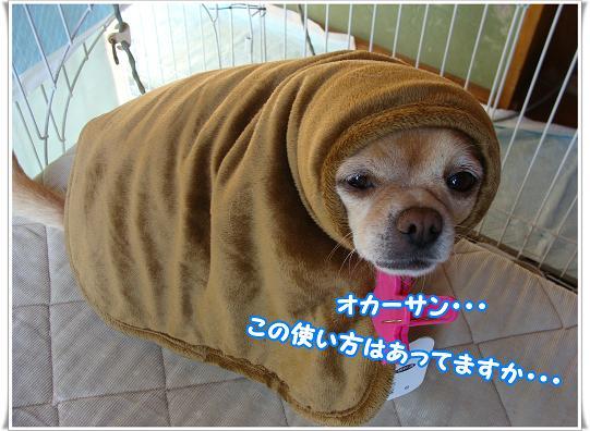070ATTEMASUKA.jpg
