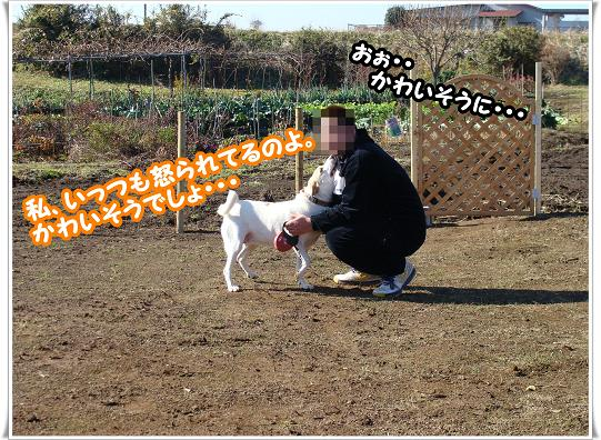 079doujousuruyo.jpg