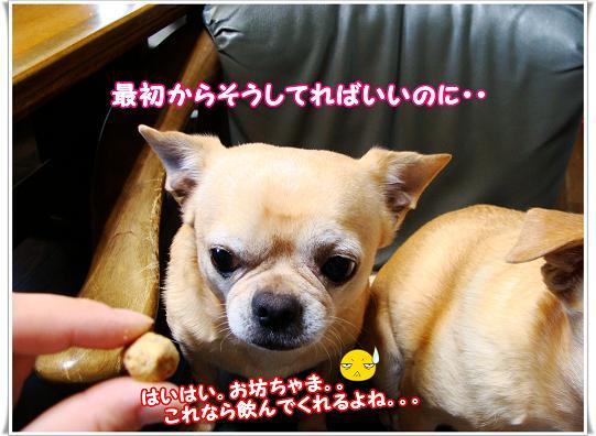 082SAISYOKARA.jpg
