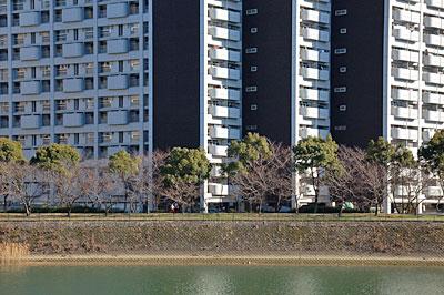 長寿園高層アパート06