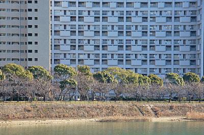 長寿園高層アパート07