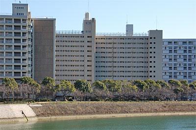 hakushimakitamachi01.jpg