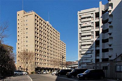 hakushimakitamachi03.jpg