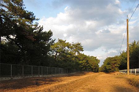 miyajidake2012-017.jpg