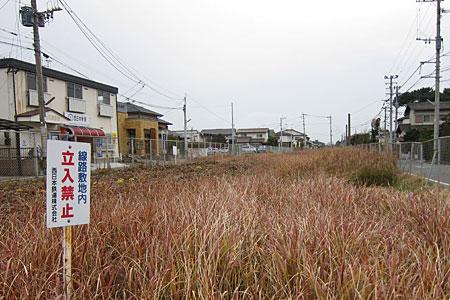 miyajidake2012-049.jpg