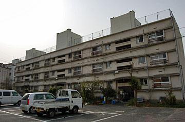 oimatsu02.jpg