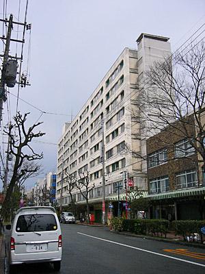 shimo_coop01.jpg