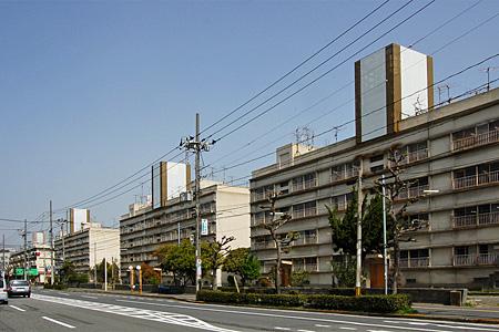 若草アパート11