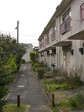 yamanota24.jpg