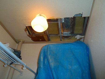 01 天井を剥がして漏水の調査