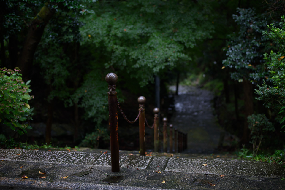 20141013-DSC_3694.jpg