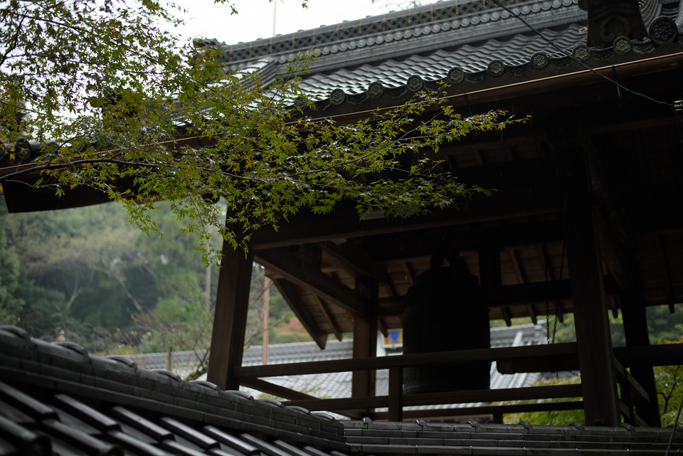 20141013-DSC_3695.jpg