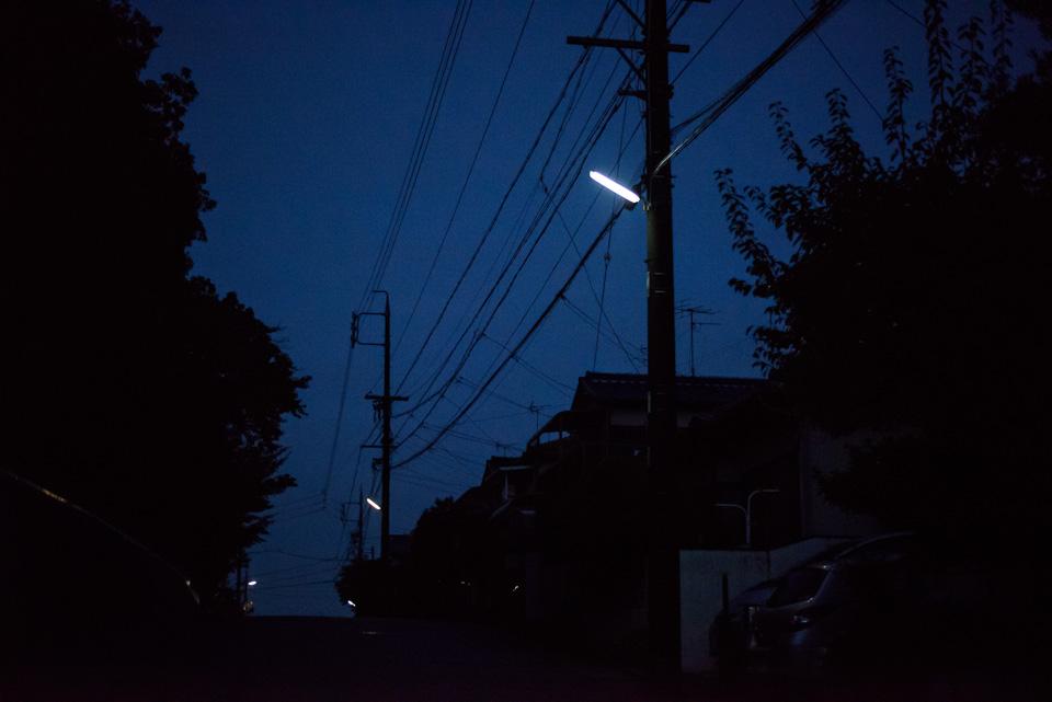 20141102-DSC_4654.jpg