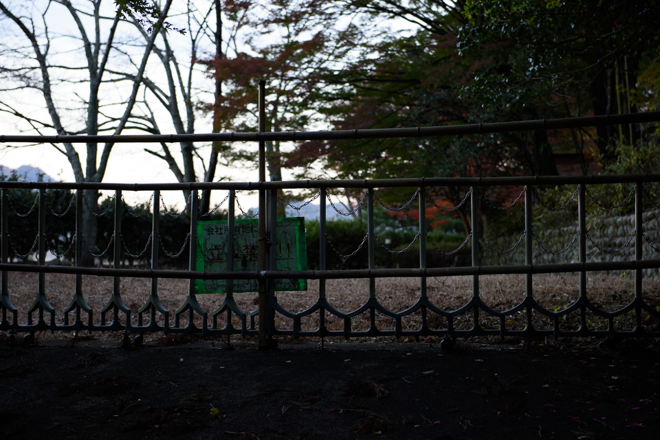 20141122-DSC_6380.jpg
