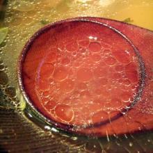 松塩スープ_convert_20101105224049