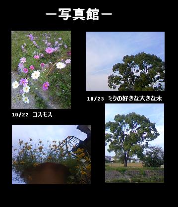 10.23写真館