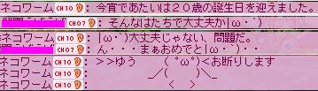 ネコワームs拡声器11.17