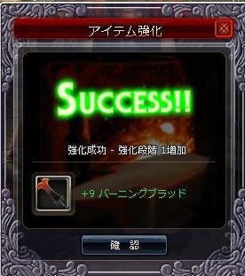 バーニング強化9