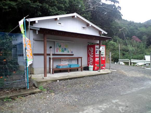 koya_130206.jpg