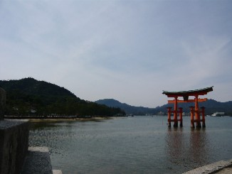 43 厳島神社の大鳥居①