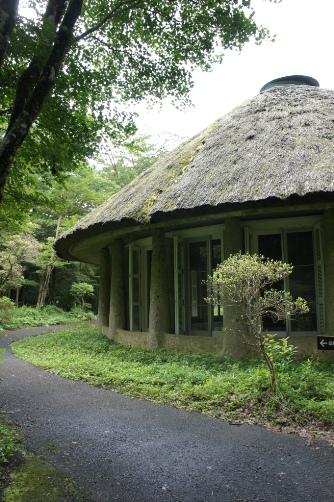 箱根樹木園休憩所④