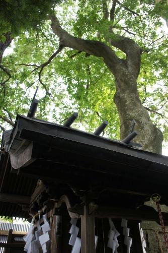 201108熊野神社②