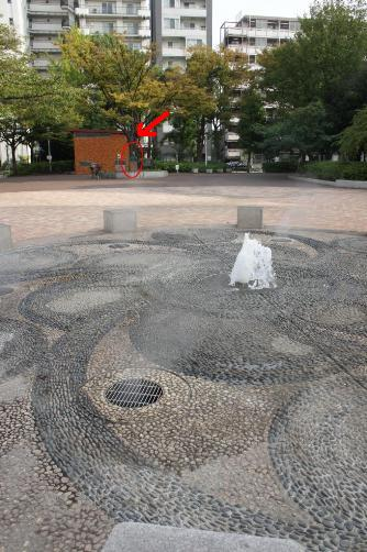 あかつき公園シーボルト前の広場