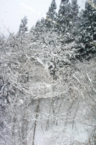 20111223沿線雪景色②