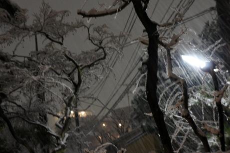 20120123東京2度目の雪