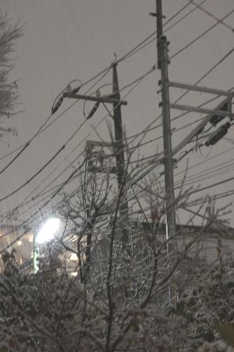 20120123東京2度目の雪②