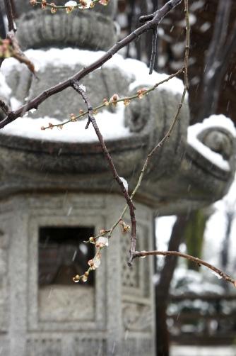 20120229石灯籠に雪