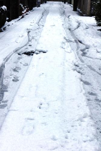 20120229雪道