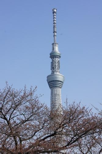 20120402隅田公園からスカイツリー