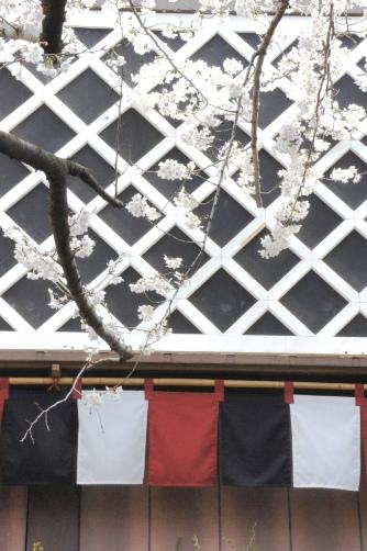 20120404中村座なまこ壁と桜