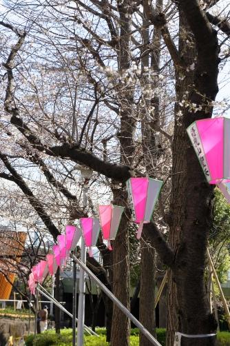 20120404桜祭りのぼんぼり