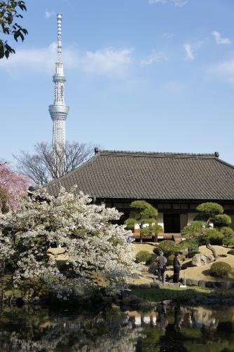 20120404伝法院庭園③