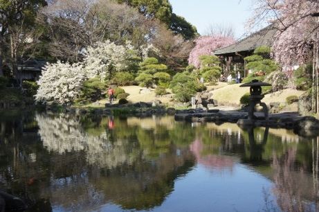 20120404伝法院庭園①
