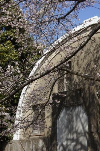 201204国立天文台コーチェ子午環②