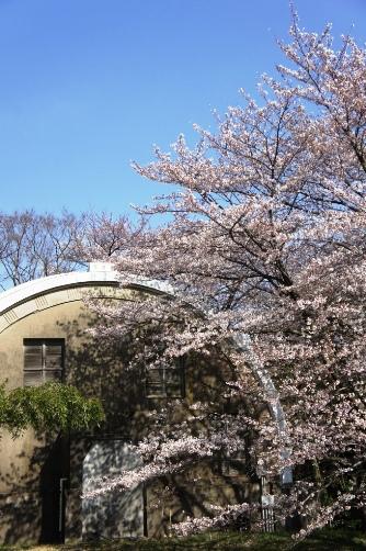 201204国立天文台コーチェ子午環①
