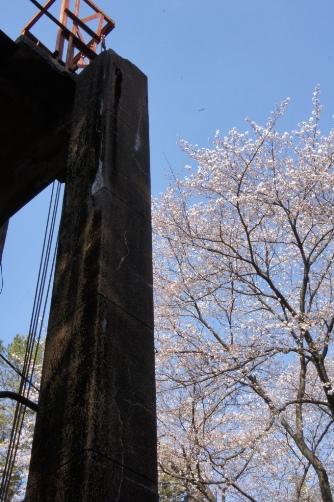 201204旧図書庫と桜