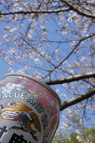 201204国立天文台桜ビール