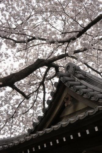 201204近くのお寺⑥