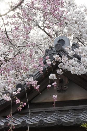 201204近くのお寺②