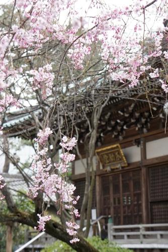 201204近くのお寺①