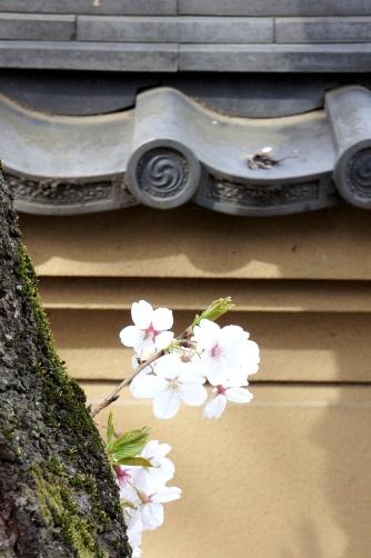 201204近くのお寺⑧