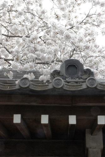 201204近くのお寺⑦