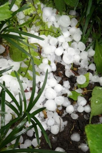 20120506雹が降ったよ⑦