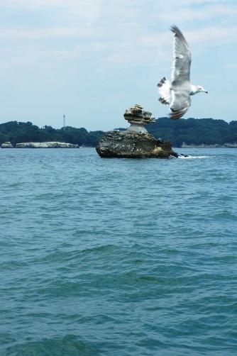 カモメと仁王島