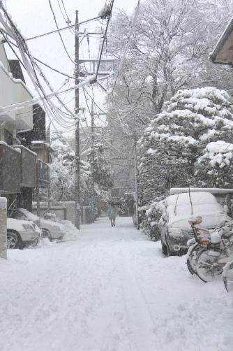 20120114 雪の日⑤